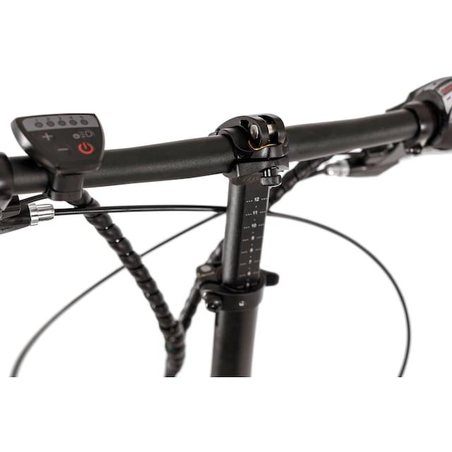 Adore E-Bike »Cologne«, 6 Gang Shimano Tourney Schaltwerk, Kettenschaltung, Heckmotor 250 W