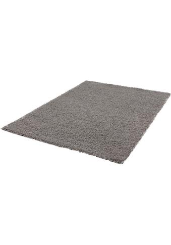 Hochflor - Läufer, »LOCA«, Sanat, rechteckig, Höhe 50 mm, maschinell gewebt kaufen