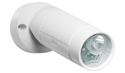 GEV, Batterie LED - Leuchte »LLL 377« kaufen