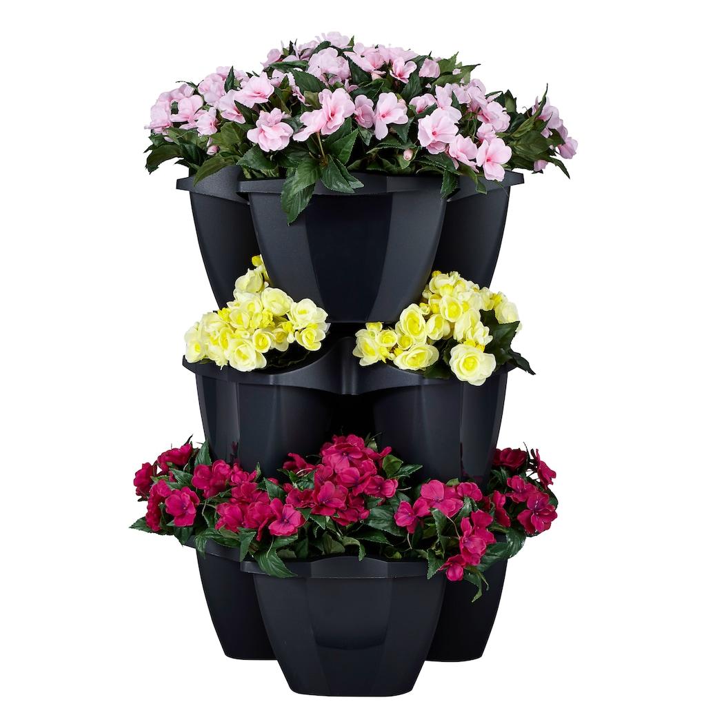 Prosperplast Blumenkasten »CROWN«, (Set, 3 St.), ØxH: 48x38 cm