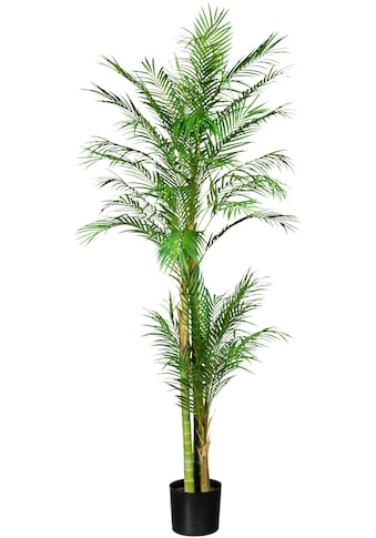 Creativ green Kunstpalme »Arecapalme« (1 Stück) kaufen