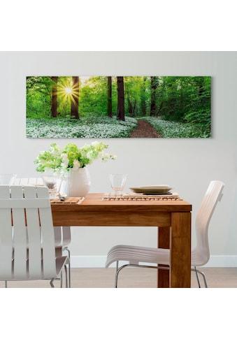 Holzbild »Deco Panel 52x156 Spring Forest« kaufen