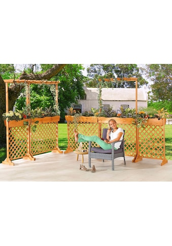 PROMADINO Holzspalier mit Pflanzkasten, BxTxH: 70x41x107 cm kaufen