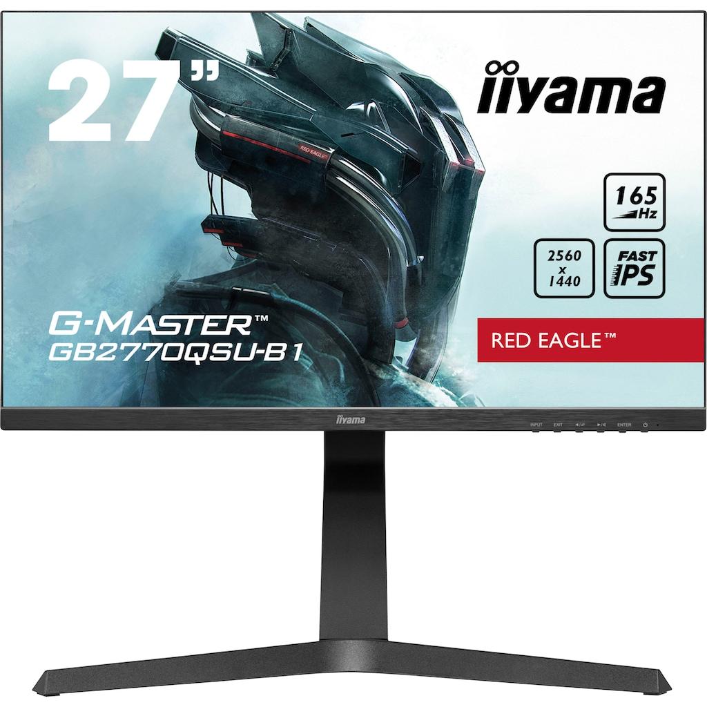 "Iiyama LED-Monitor, 68,5 cm/27 "", 2560 x 1440 px, WQHD, 0,5 ms Reaktionszeit, 165 Hz"