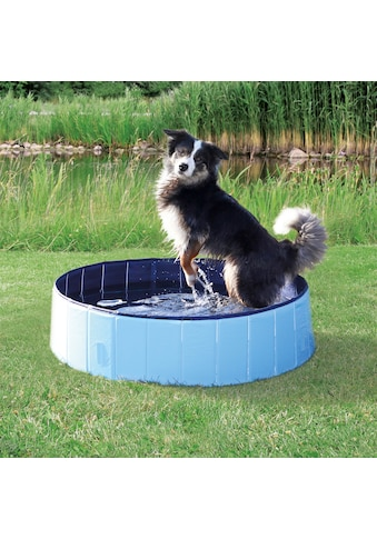 TRIXIE Planschbecken »Hundepool«, ØxH: 80x20 cm kaufen