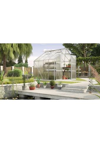 KONIFERA Gewächshaus »Titania 6700« kaufen