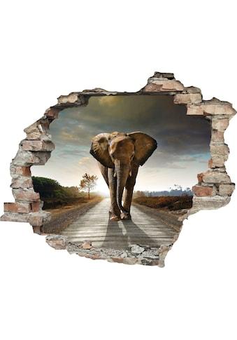 queence Wandtattoo »Elefant« (1 Stück) kaufen
