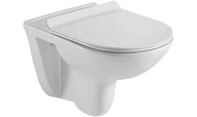 SANOTECHNIK WC - Element »FARO«, inkl. WC - Sitz kaufen