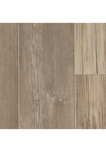 Bodenmeister Vinylboden »PVC Bodenbelag Diele Pinie«, Meterware, Breite 200/300/400 cm kaufen