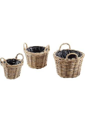 Home affaire Blumenkasten »Pflanzkorb« (3 Stück) kaufen