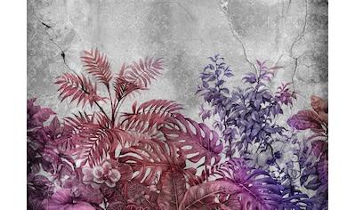 CONSALNET Vliestapete »Violette Pflanzen/Beton«, in verschiedenen Größen kaufen