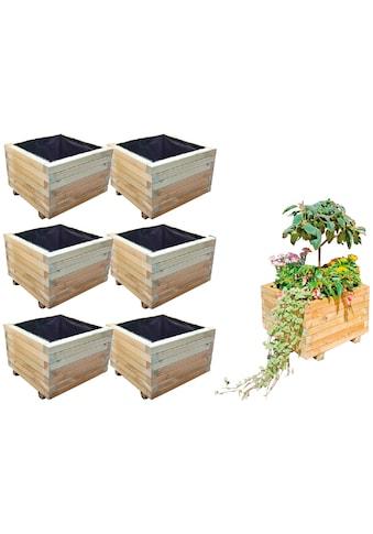 T&J Blumenkasten »Mobile 4«, 6er Set, BxTxH: 50x50x38 cm kaufen