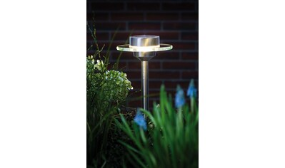 Paulmann,Gartenleuchte»Outdoor Solarspieß Special Line Ufo LED Edelstahl«, kaufen
