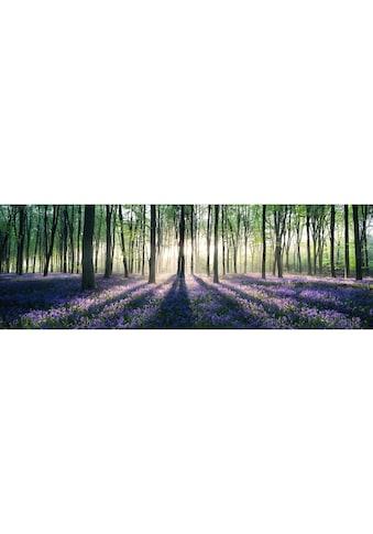 Home affaire Deco-Panel »Verzauberter Wald« kaufen
