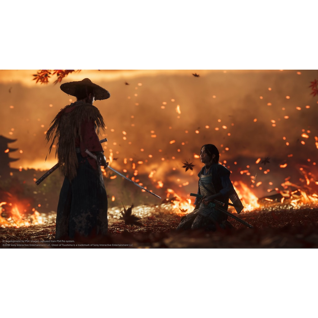 Ghost of Tsushima Collector's Edition PlayStation 4