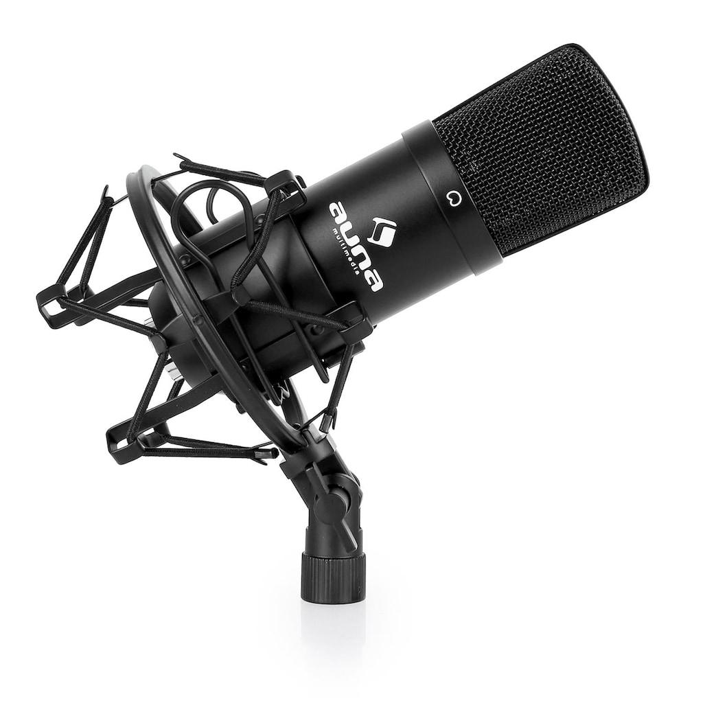 Auna Kondensatormikrofon Studio Gesang Instrumente Mikrofonspinne XLR