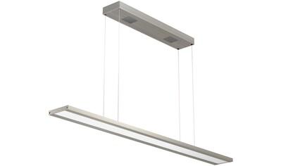 EVOTEC,LED Pendelleuchte»CLASSIC TEC BASIC«, kaufen
