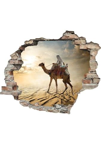 queence Wandtattoo »Kamelreiter« kaufen