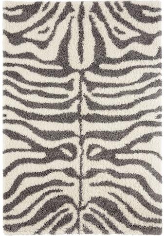 Hochflor - Teppich, »Maisie«, my home, rechteckig, Höhe 35 mm, maschinell gewebt kaufen