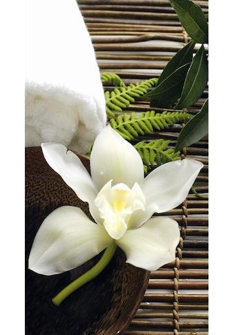 Wall-Art Vliestapete »Wellness Orchidee« kaufen