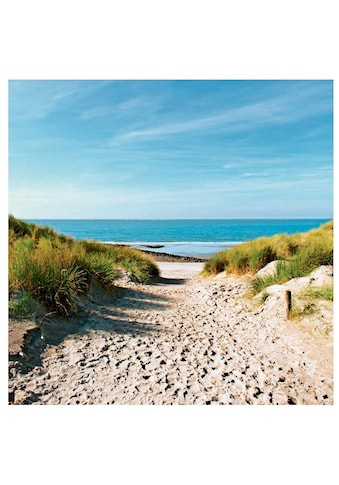 Home affaire Glasbild »Beach with sand dunes and a path to the sea« kaufen