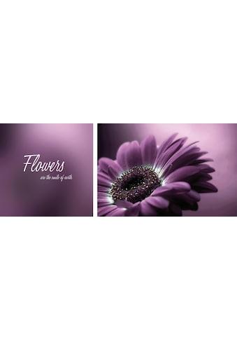 queence Leinwandbild »Flower«, (Set), 2er-Set kaufen