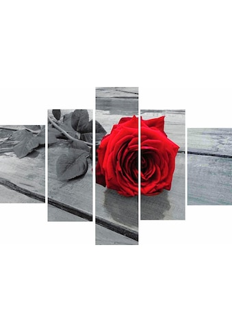 Home affaire Wandbild »RUMIN / Rose on the floor« kaufen