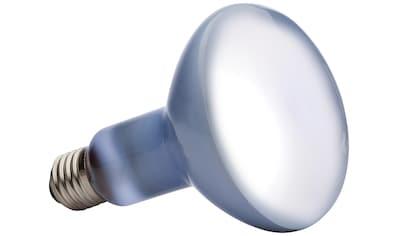 EXO TERRA Terrarienbeleuchtung »Daylight Basking Spot«, 150 W kaufen