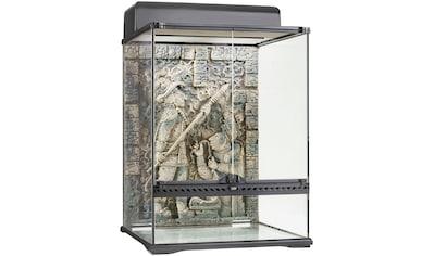 Exo Terra Terrarium »Aztec«, BxTxH: 33x47,5x63 cm kaufen