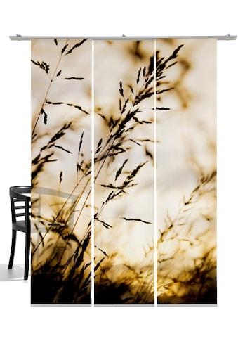 Schiebegardine, »Windrausch Sepia«, emotion textiles, Klettband 3 Stück kaufen