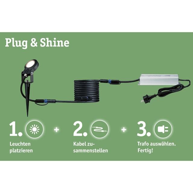 Paulmann,LED Gartenstrahler»Outdoor Plug & Shine Starterset Spot Plantini«,