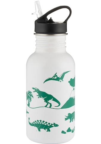 Typhoon Trinkflasche »PURE, Dinsaurier«, Edelstahl, wechselt die Farbe, 550 ml kaufen