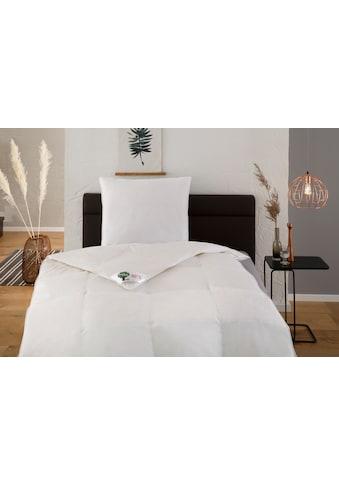 Federbettdecke + Kopfkissen, »Natural HYBRID®«, Hanse by RIBECO, (Spar - Set) kaufen