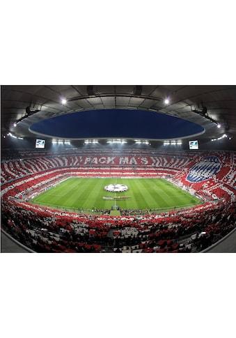 Fototapete »Bayern München Stadion Choreo Pack Mas«, kaufen