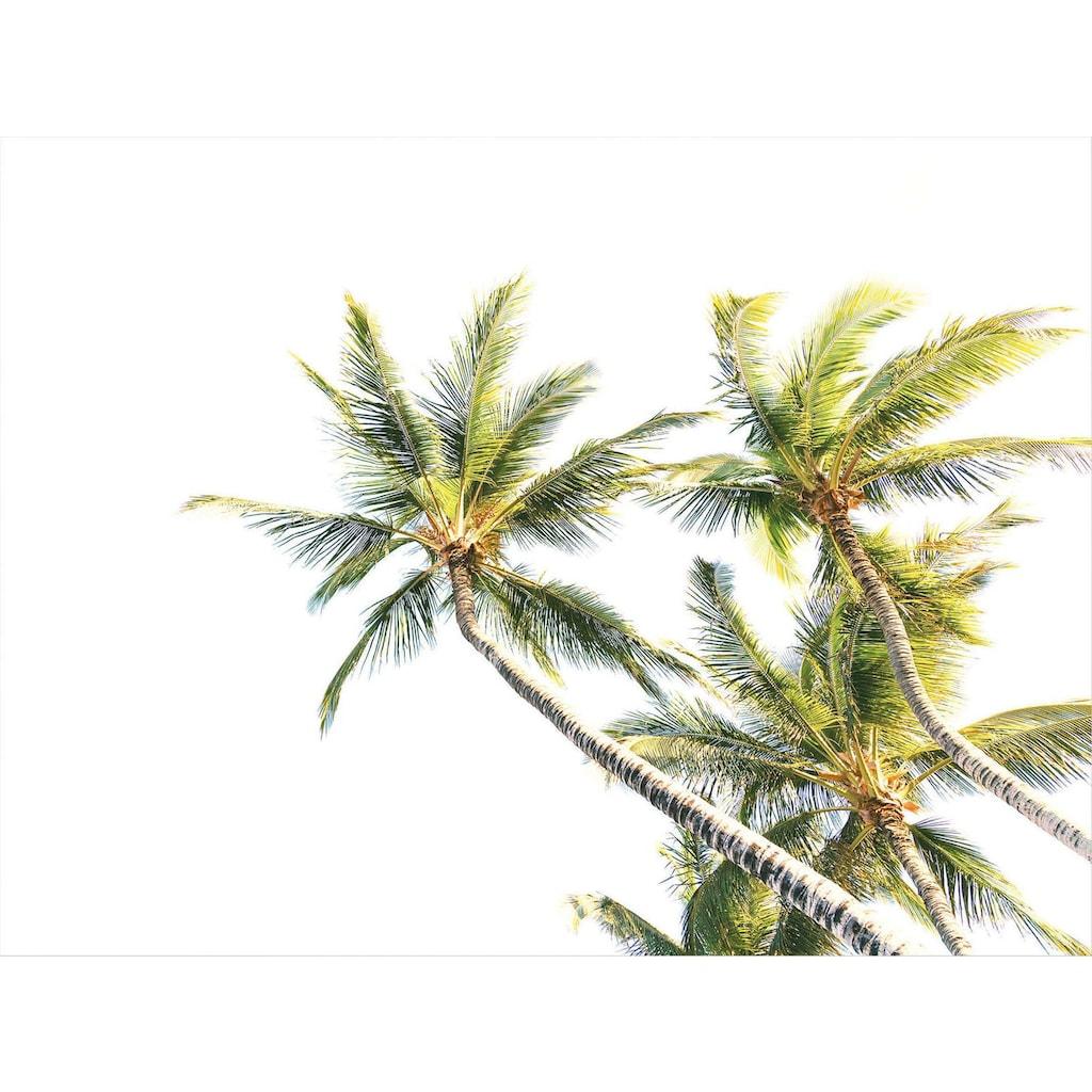 Poster »Surfer Paradies« (Set)