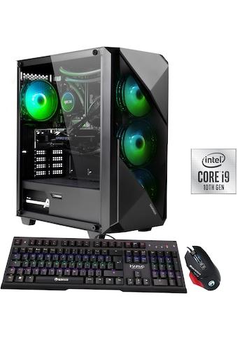 Hyrican Gaming-PC »Striker 6608« kaufen