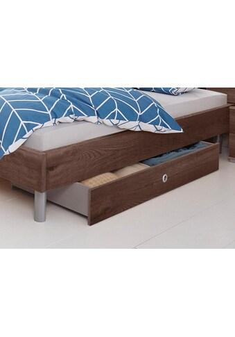 Wimex Bettschubkasten »Easy« kaufen