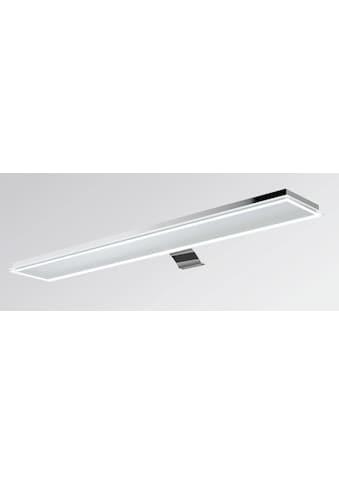 EVOTEC LED Bilderleuchte »PALMA«, LED-Board, Tageslichtweiß-Kaltweiß kaufen