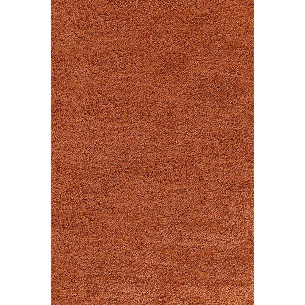 Ayyildiz Hochflor-Läufer »Life Shaggy 1500«, rechteckig, 30 mm Höhe, 80cm x 250cm (BxL)