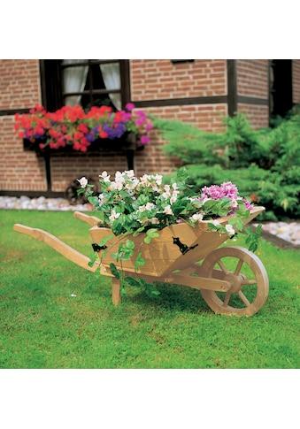 promadino Pflanzkübel, BxTxH: 145x56x52 cm kaufen