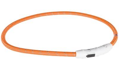 TRIXIE Hundehalsband »USB Flash«, in versch. Größen kaufen