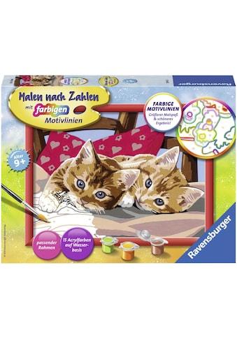 Ravensburger Malen nach Zahlen »Zwei Schmusekätzchen«, Made in Europe, FSC® - schützt... kaufen