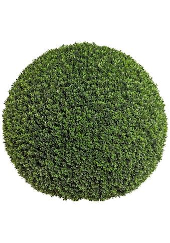 Creativ green Kunstpflanze »Buchsbaumkugel« (1 Stück) kaufen