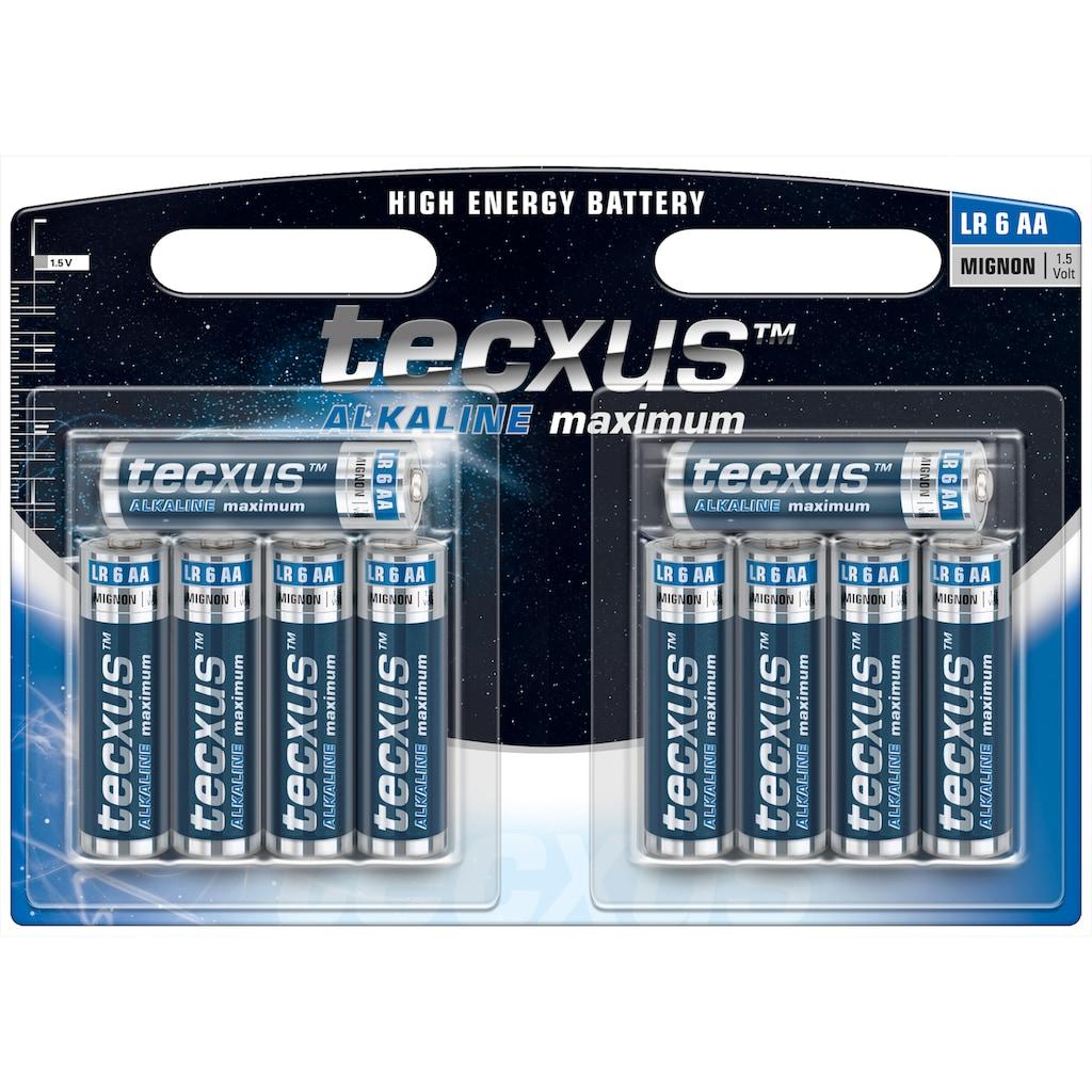tecxus Batterie »mit langer Lebensdauer«, (Packung), 10er Pack Mignon LR6 / AA Batterien Alkaline 1,5 V