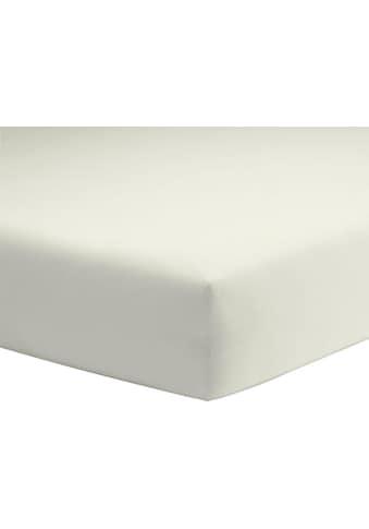 Schlafgut Spannbettlaken »Elasthan-Zwirnjersey«, für extra-straffen Sitz kaufen