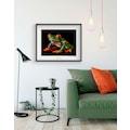 KOMAR Wanddekoration »Red-eyed Treefrog«