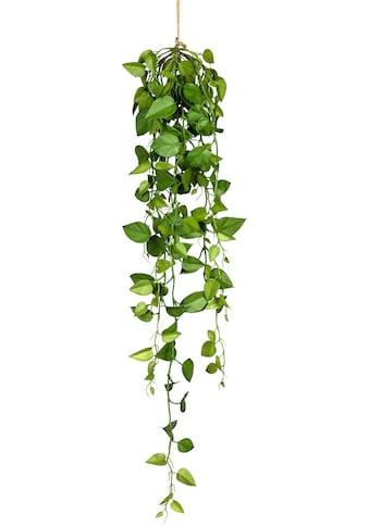 Creativ green Kunstranke »Philodendron - Hängezopf« (1 Stück) kaufen