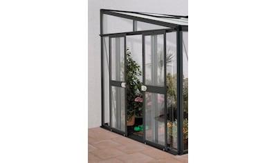 VITAVIA Tür , BxH: 119x176 cm, für Gewächshaus »Helena«, dunkelgrau kaufen