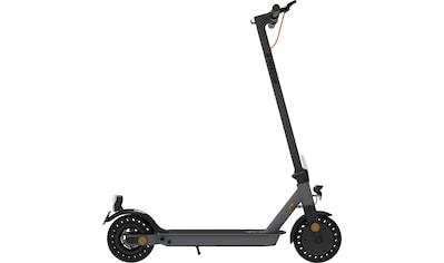 TrekStor E - Scooter »EG 3168«, 350 Watt, 20 km/h kaufen