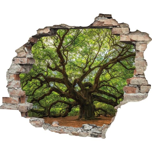 queence Wandtattoo »Baum« (1 Stück)